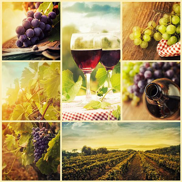 Great-wine-tasting-offer-in-Umbria