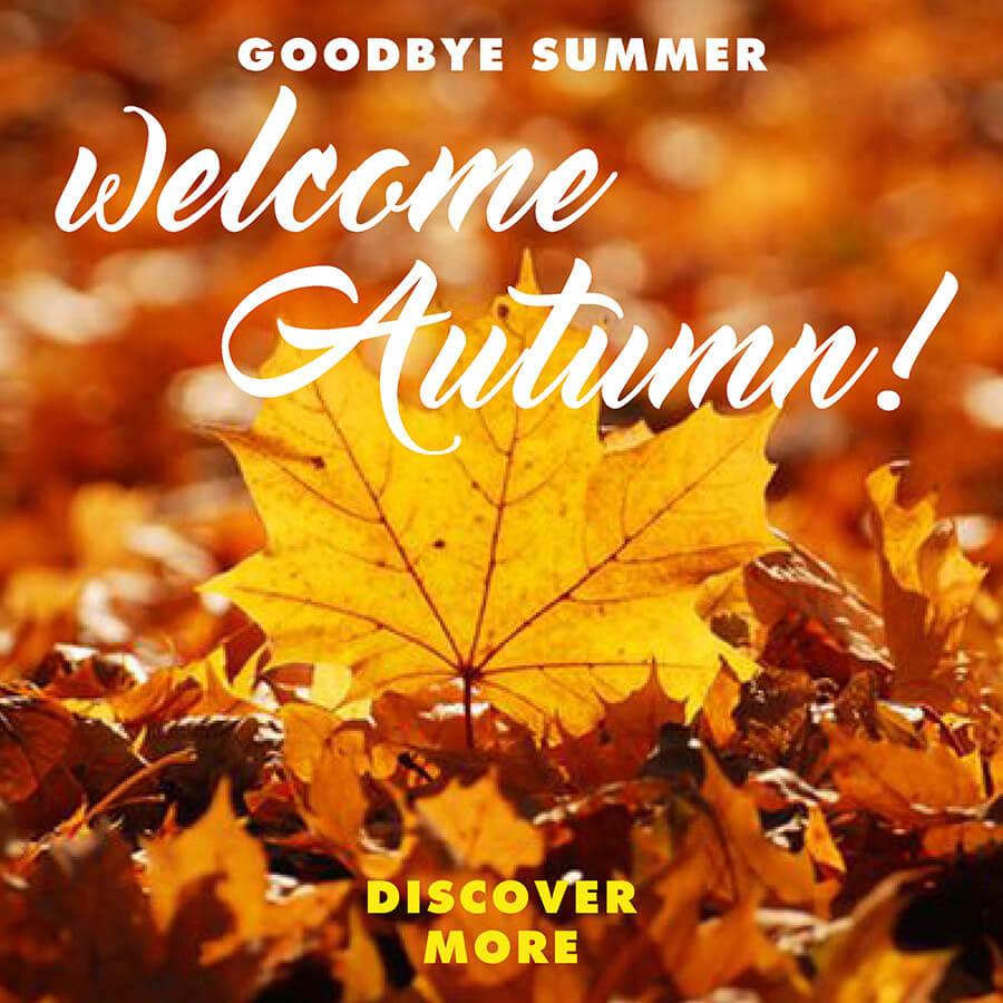 Villa Monte Solare Autumn Sales offer