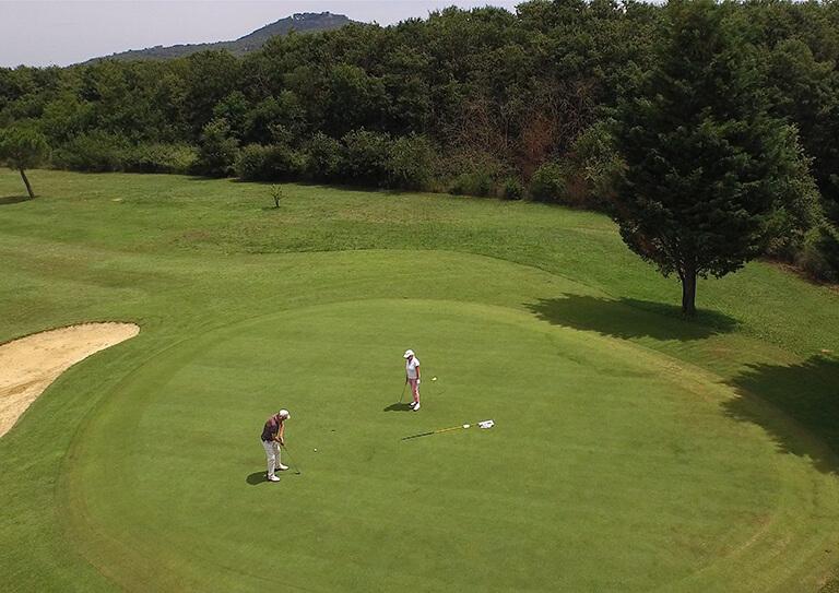vms golf