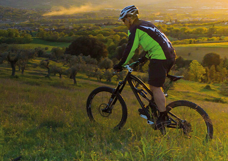 vms mountain bike